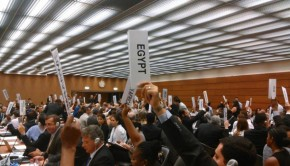Delegates vote through the report at the UN
